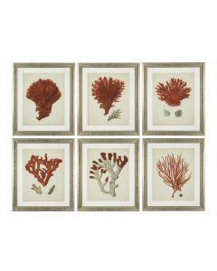 Antique Red Corals Prints - Set of 6