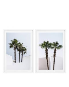 Palm Trees Prints - Set of 2