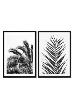 Palm Leaves Prints - Set of 2