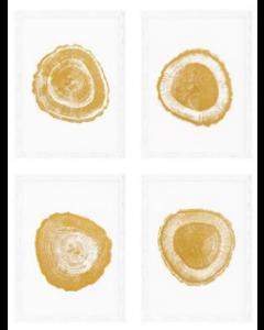 Gold Foil Tree Rings Prints - Set of 4