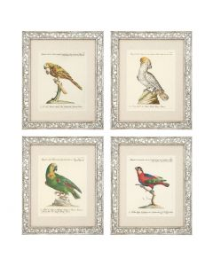 Dunbar II Prints - Set of 4